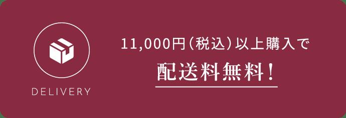 10,000円(+税)以上購入で配送料無料!